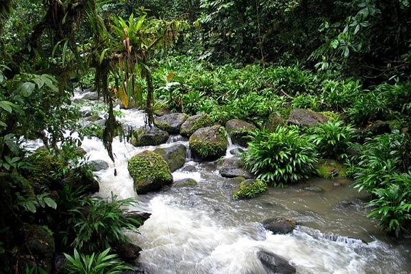 ecotourism in costa rica case study