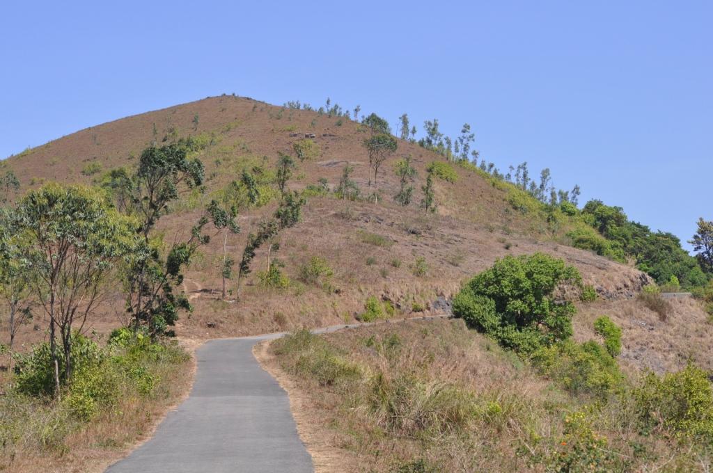 Gavi Tourism
