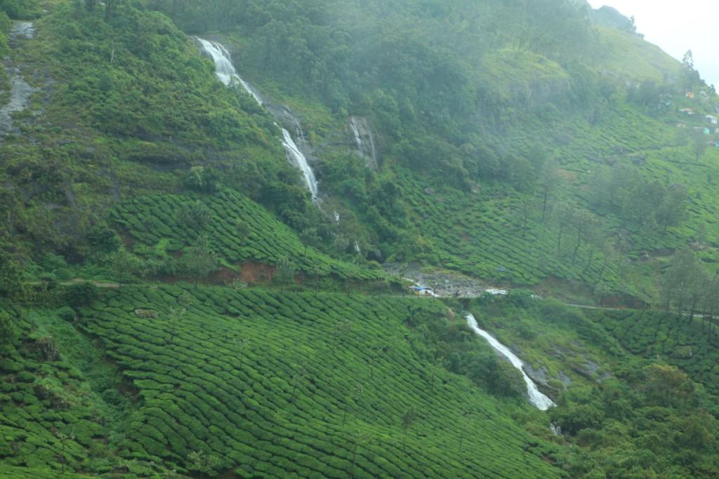 latest malayalam  news,latest news in kerala,latest news in trivandrum