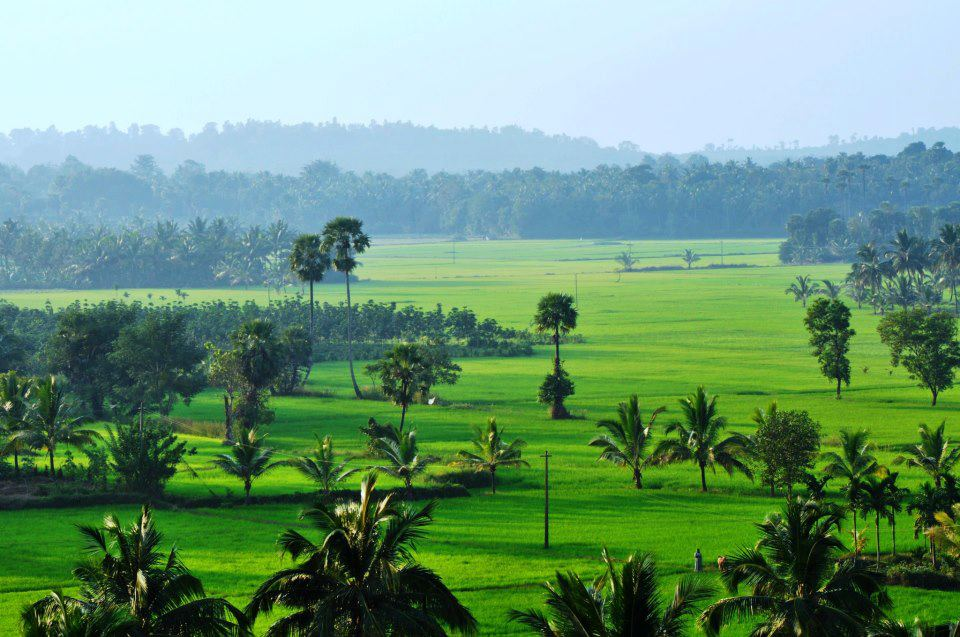 Wonderland Natural Beauty Of Kerala