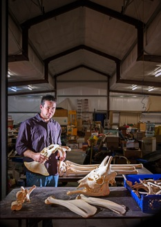 Eric Prokopi, of Gainesville, in the five-thousand-square-foot fossil workshop that he built in his back yard. Photograph by Richard Barnes.