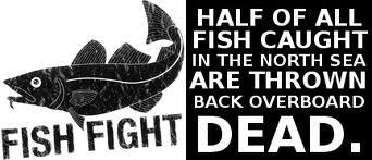 www.fishfight.net