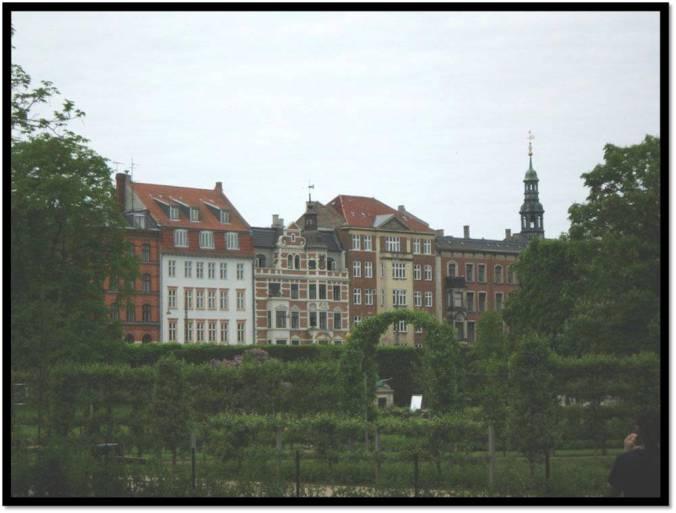 Park in København  -Enriching the city's biodiversity