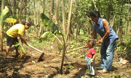 Salvadorans Elsy Álvarez and Maria Menjivar, with her young daughter, plant plantain seedlings in a clearing in the forest. Photograph: Claudia Ávalos/IPS