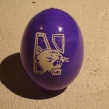 for a Northwestern University student
