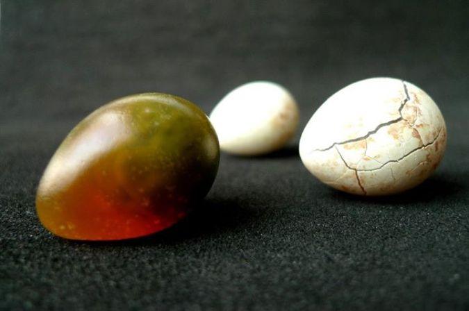 169-1000-year-old-quail-egg