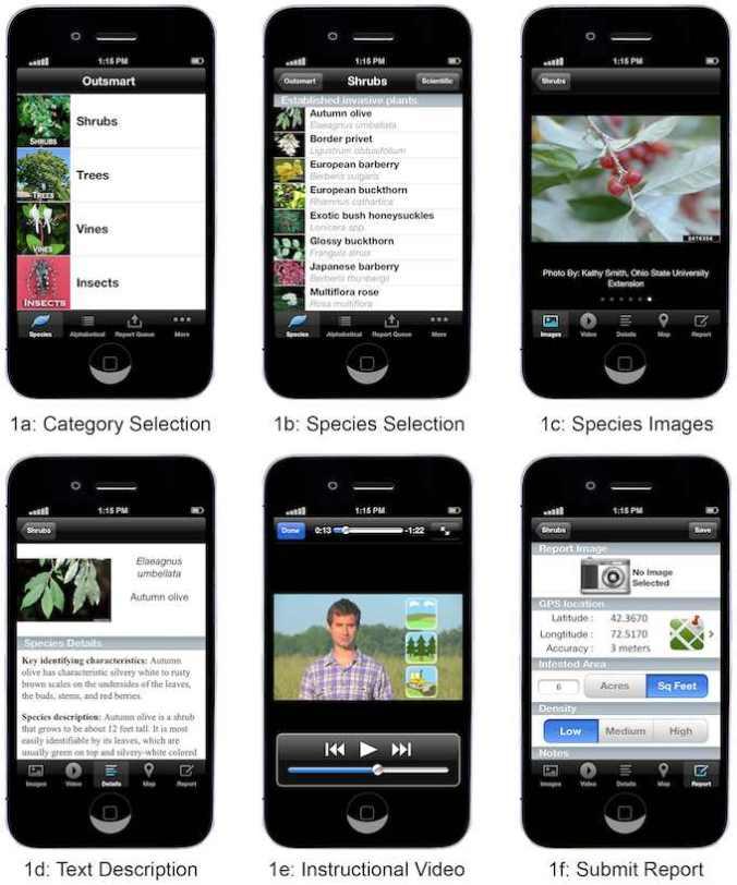 screenshots-resized