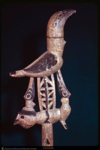 On the eleventh Day of Taxonomy My true love sent to me A wooden bird from Papua New Guinea!