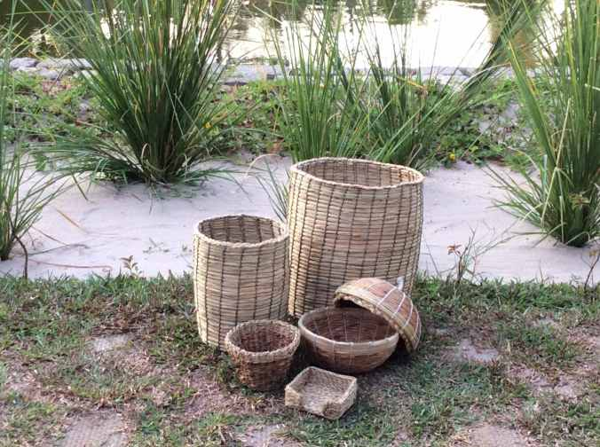 Water hyacinth products