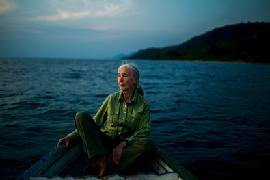 Michael Christopher Brown/Magnum, for The New York Times. Jane Goodall on Lake Tanganyika, offshore from Gombe Stream National Park in Tanzania.