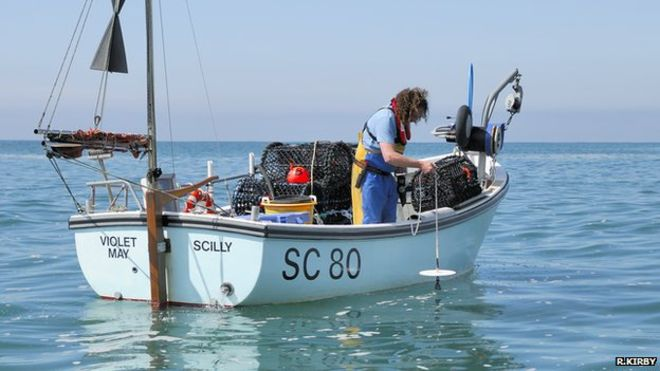"Fishermen in South Devon, UK, have turned their boats into ""massive data platforms"" for a citizen science study."