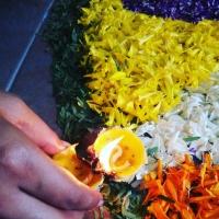 An eco-friendly lamp made of lemon skins