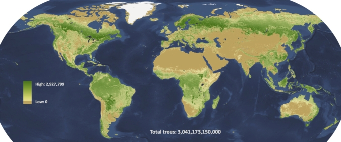 Three trillion trees, mapped to the square kilometre.  Source: Crowther et al / Nature
