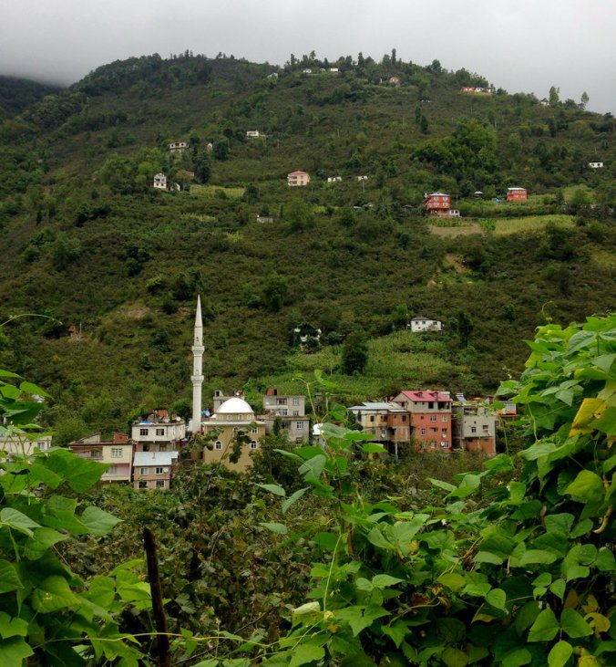 """Steep hills surround the village of Kuskoy, high in the mountains above Turkey's Black Sea coast. Some villagers here can still understand the old """"bird language,"""" a form of whistled Turkish used to communicate across these deep valleys. Peter Kenyon/NPR"""