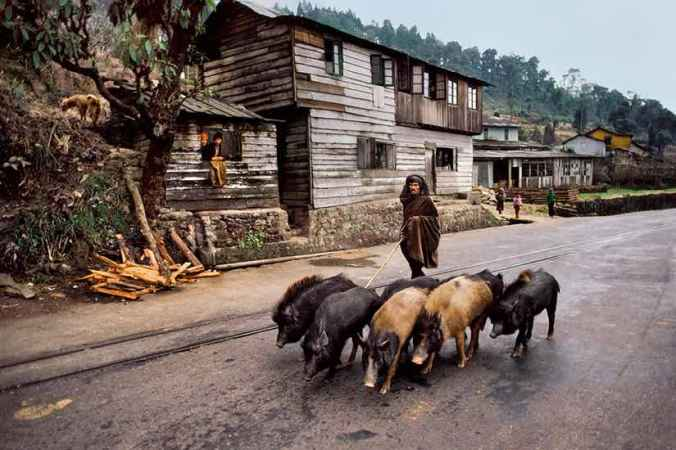 i187-darjeeling-west-bengal-1983