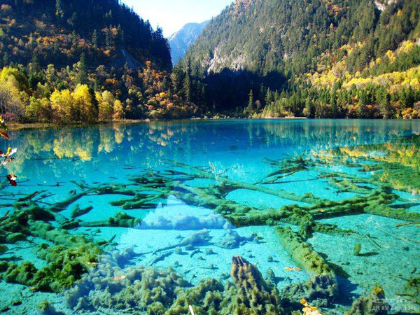crystalline-turquoise-lake-jiuzhaigou-national-park-china-01