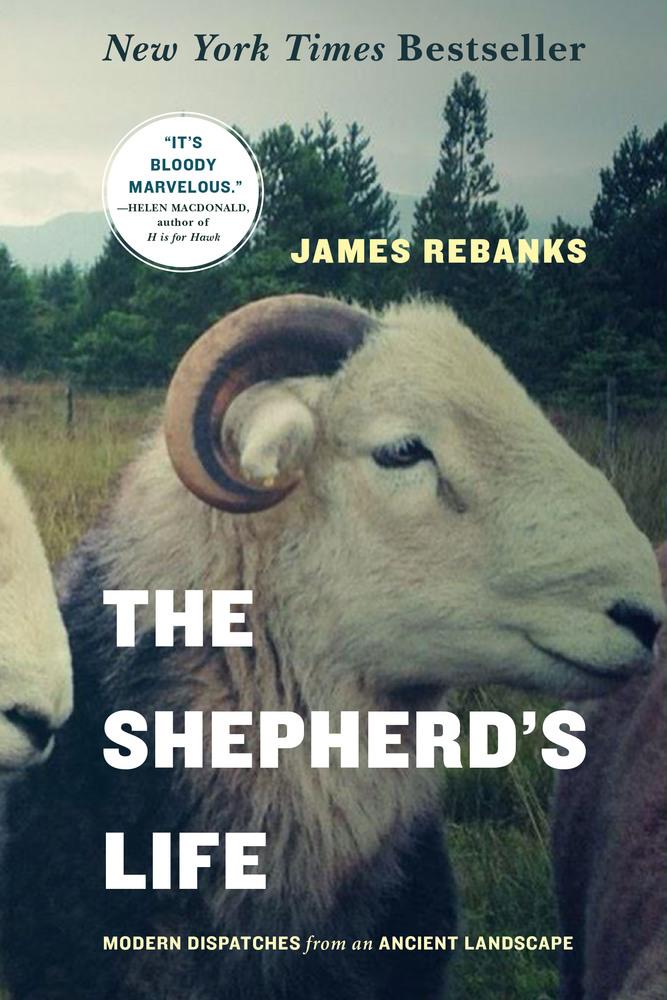 ShepherdLopateBook.jpg