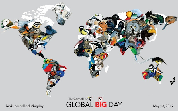 Cornell_Lab_Global_Big_Day_Map-625px