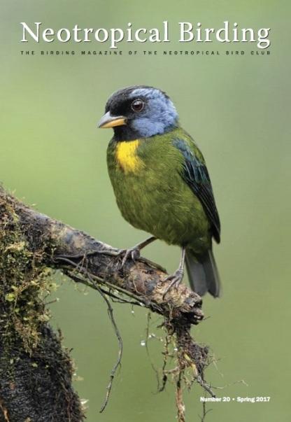 Neotropical Birding