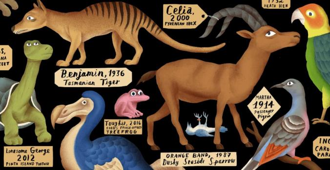 what-do-you-call-the-last-of-a-species-1200