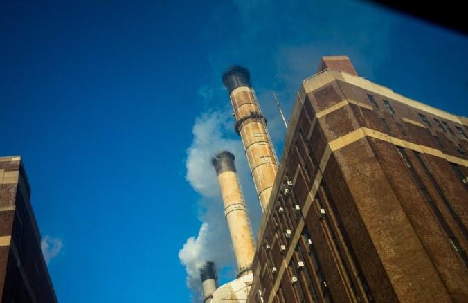 McKibben-Fossil-Fuel-Divestment