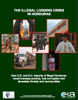 Honduras Logging