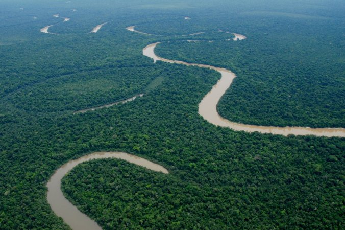 20SCI-AMAZON1-jumbo