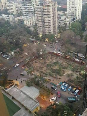 ZB_MumbaiTreesStreet_2017.jpg