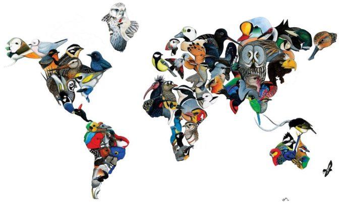 GBD-world-map_2-1024x624.jpg