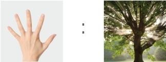 Hand+Tree