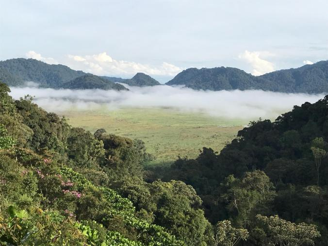 Rwanda2.jpeg