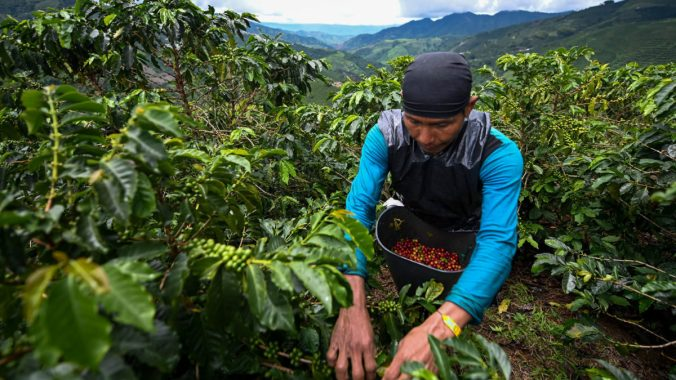 GettyImages-1146667212_ColombiaCoffee_web.jpg