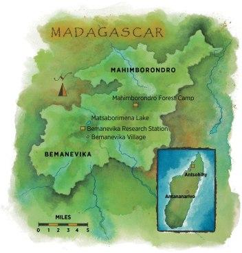 web_madagascar-map.jpg