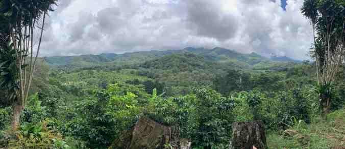 Hacienda La Amistad
