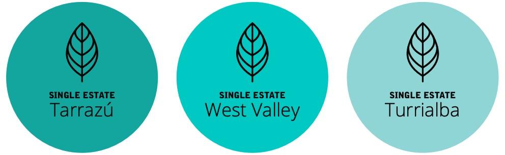 Single Estates.jpg
