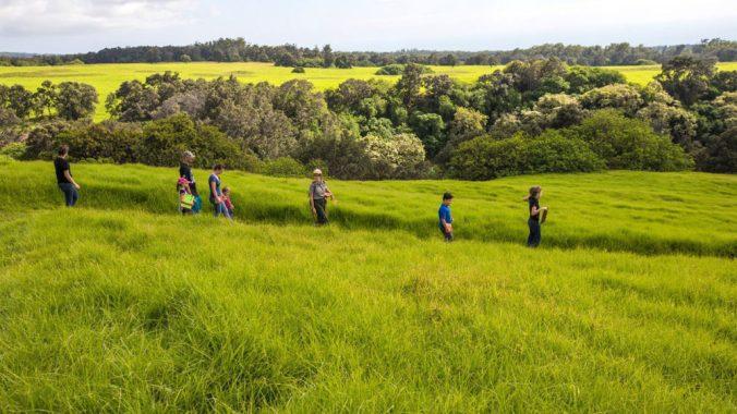 hiking-puu-o-lokuana-with-ranger-jessica_39621953902_o_web.jpg