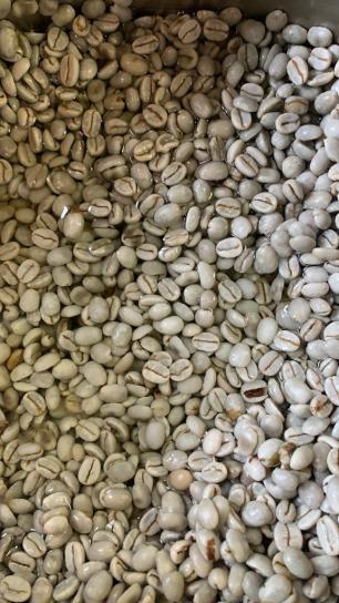 CoffeeClean4