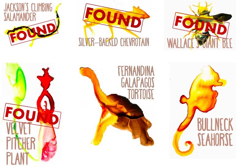 LostFound1